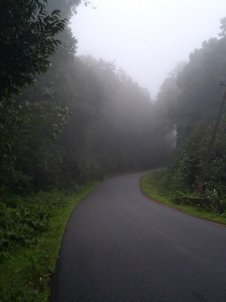 Foggy Ghat Road