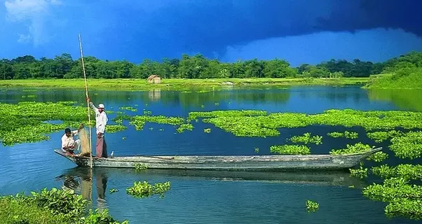 Best time to visit Assam - Assam - Inditrip