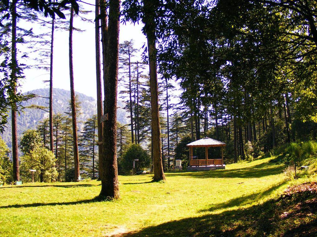 Dhanaulti Uttarakhand