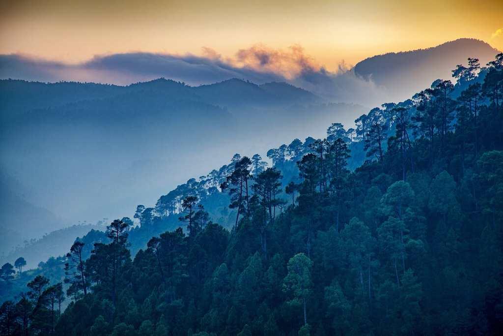 Ranikhet Uttarakhand