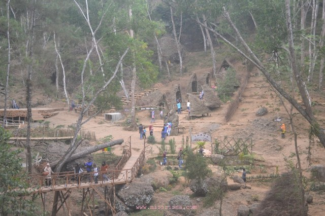 Transformasi hutan pinus menjadi Wanawisata Budaya Mataram Mangunan Dlingo, Kab. Bantul. indonesia travelller guide, panduan wisata indonesia