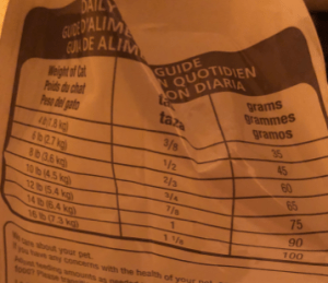 how much should i feed my indoor cat