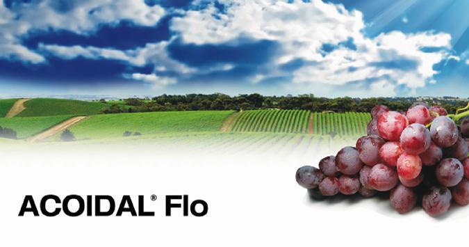 Acoidal Flo Quimetal Industrial S A