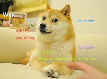 Original_Doge_meme.jpg