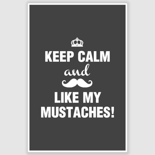 Keep Calm and Like My Mustaches Poster (12 x 18 inch)