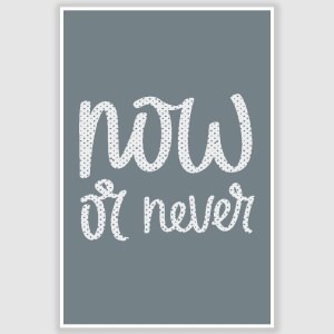 Now or Never Inspirational Poster (12 x 18 inch)
