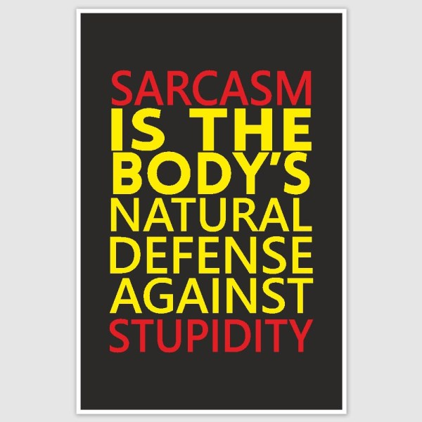 Sarcasm Funny Poster (12 x 18 inch)