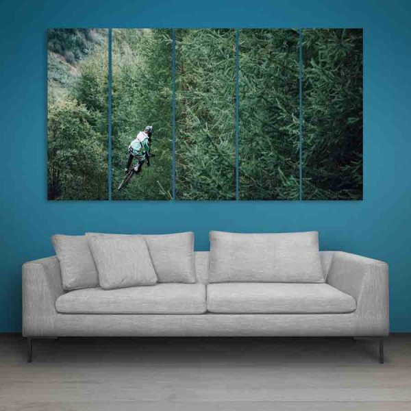 Multiple Frames Cycle Leap Wall Painting (150cm X 76cm)