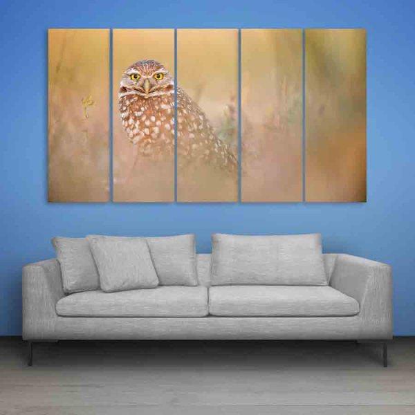 Multiple Frames Beautiful Owl Wall Painting (150cm X 76cm)