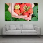 Multiple Frames Beautiful Strawberries Wall Painting for Living Room