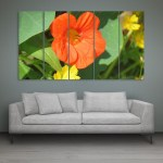 Multiple Frames Beautiful Orange Flower Wall Painting for Living Room