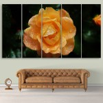 Multiple Frames Beautiful Rose Wall Painting for Living Room