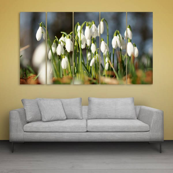 Multiple Frames Beautiful Flowers Wall Painting for Living Room