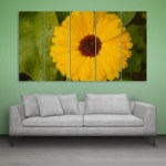 Multiple Frames Beautiful Yellow Flower Wall Painting for Living Room