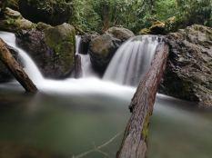 T'daan Kini Spring Waters6