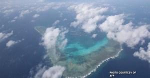 julian-felipe-reef