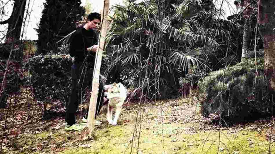 Gabriel Garko a passeggio con il suo cane (foto Instagram).
