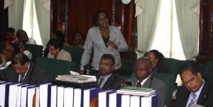 Junior Public Infrastructure Minister, Annette Ferguson