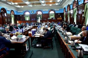 The National Assembly in session (Carl Croker photos)