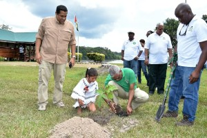 President Granger, with the help of this little lady, eight year old Konankiae, planted this Breadfruit tree at the Iwokrama Centre today, in observance of National Tree Day.
