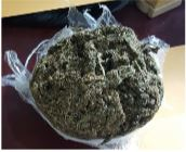 Cannabis found at Takuba Lodge backdam