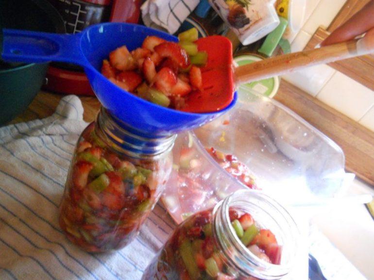 canning-rhubarb