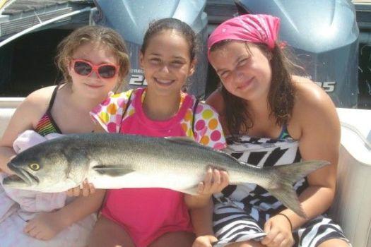 shark camp for kids