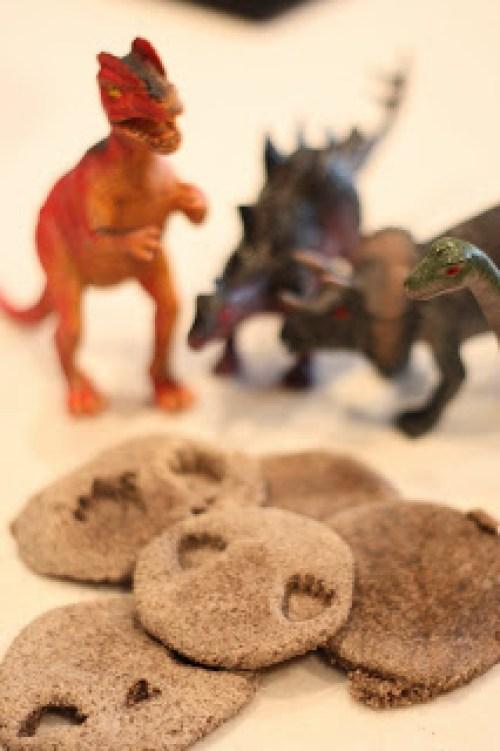 DinoFossils