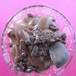 chocolate mint pudding with chocolate mint girl guide cookies