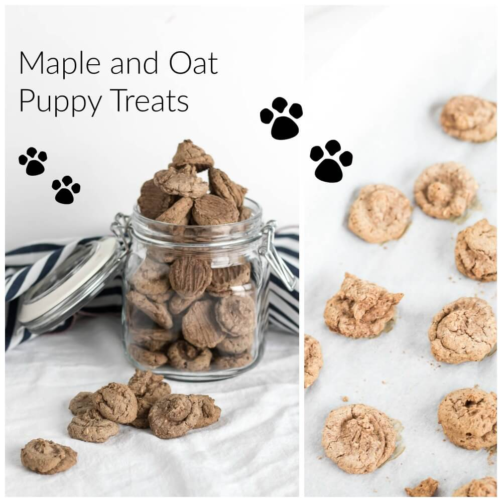 Maple Oat Puppy Treats   www.infinebalance.com #recipe #dog