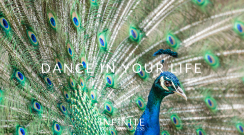 Dance in Your Life