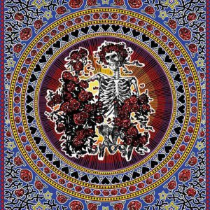 Grateful Dead Skull and Roses Tapestry - Bertha Tapestry