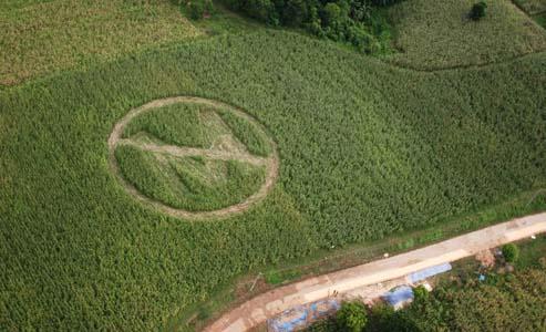 Hambre y Monsanto