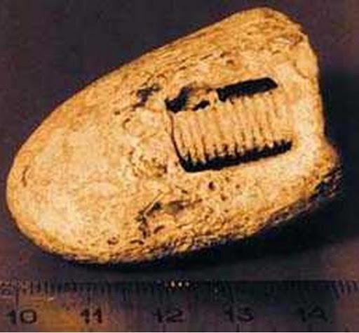 300 million years old screw