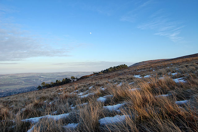 Илкли Мур - горная вересковая пустошь и заповедник в Йоркшире, Англия.