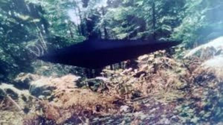 Black UFO Alien Encounter Of Jonathan Reed