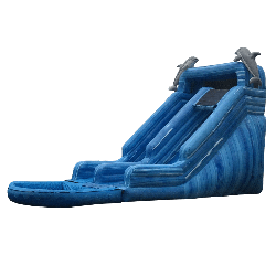 Dolphin Waterslide
