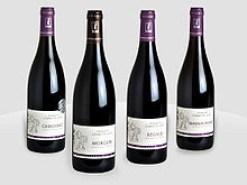 220px-Beaujolais-vin-domaine-de-la-combe-au-loup