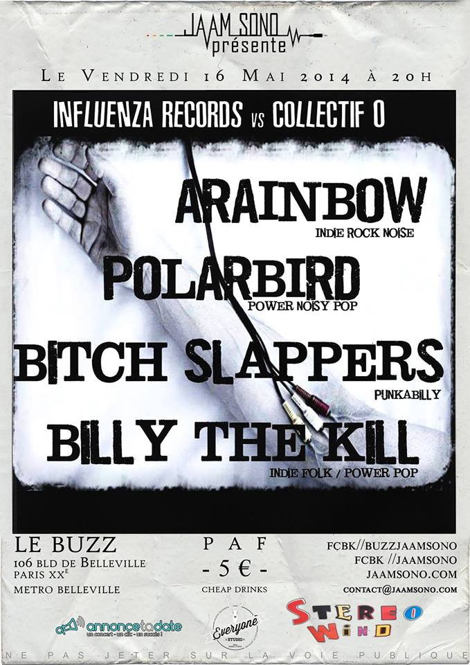 Flyer polarbird Buzz