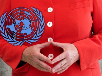 Manipulation bei Petition gegen den UN-Migrationspakt?