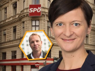 Sabine Schatz (SPÖ), Stefan Magnet