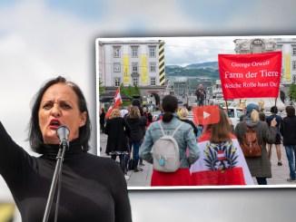 Corona-Demo: Unternehmer fordern Rücktritt von Kanzler Kurz