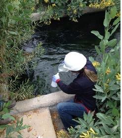 Monitoreo de agua en drenes del Dique de Colas