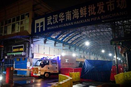 El mercado húmedo de Wuhan (NOEL CELIS / AFP)