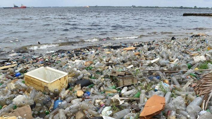 Según la ONU, cada año 8 millones de toneladas de plástico van a parar a los océanos, que son ingeridos por los animales marinos y entran en la cadena alimentaria hasta llegar a nuestros platos