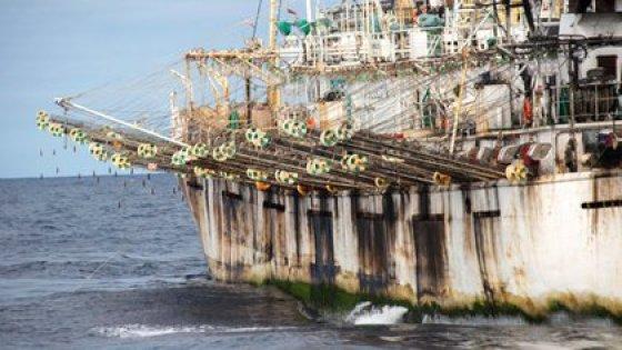 La flota pesquera china navega merodea la costa sudamericana