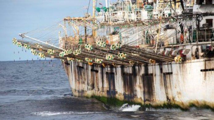La flota pesquera china puede ser observada a través del sistema de monitoreo de Global Fishing Watch