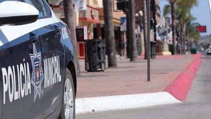 En la violenta Tijuana (Baja California) los hermanos Arzate asientan su poderío criminal (Foto: Ayuntamiento de Tijuana)