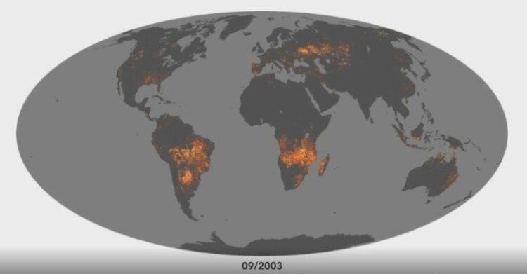 Los incendios fotografiados por la NASA (Foto: NASA)