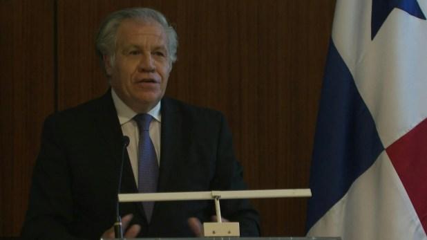 """El secretario general de la Organización de Estados Americanos (OEA), Luis Almagro, manifestó el martes en Panamá que el mayor problema para las democracias latinoamericanas es cuando """"gobierna un burro"""", porque eso genera """"incapacidad"""" para gobernar."""